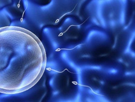 آندرولوژی رشته علمی است که با عملکرد جنسی مردان در ارتباط است